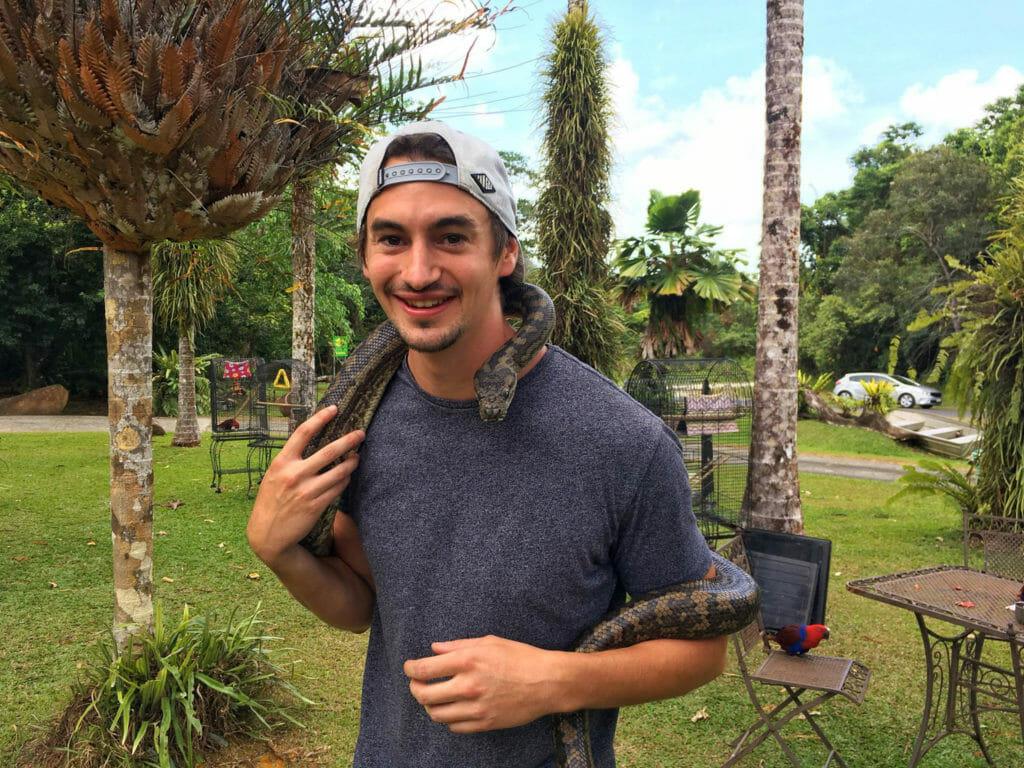 Python australie