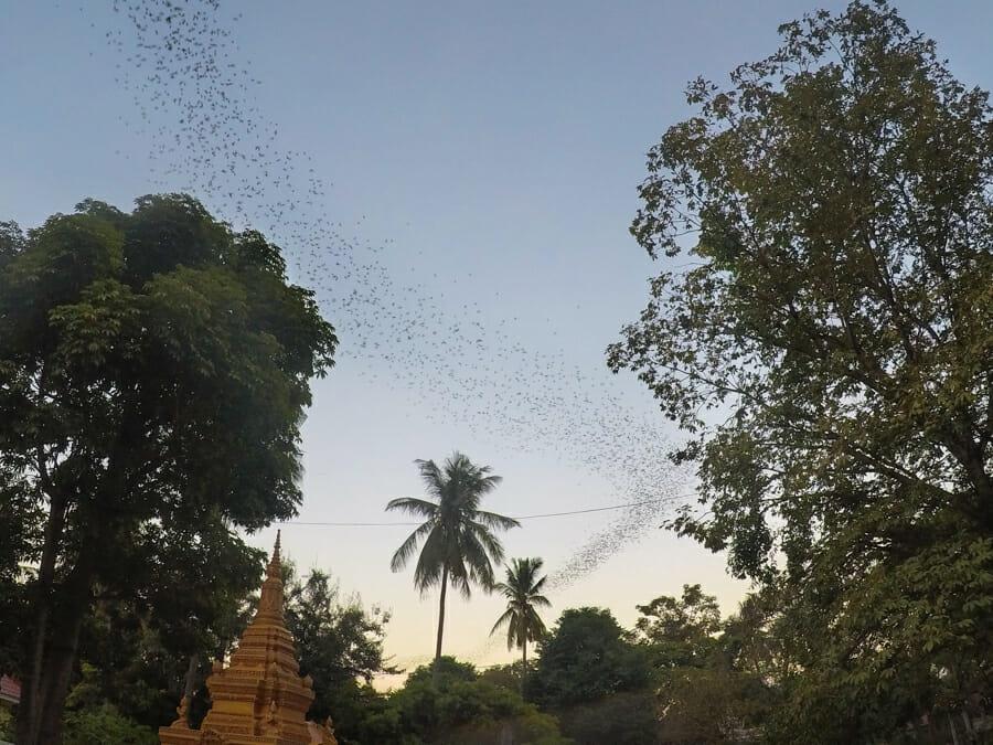 itineraire cambodge battambang