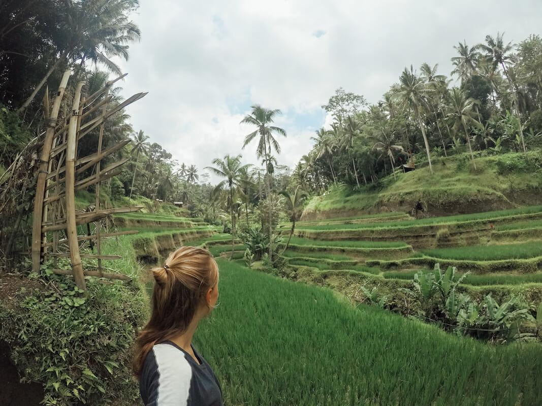 Rizieres tegalangang Ubud Bali