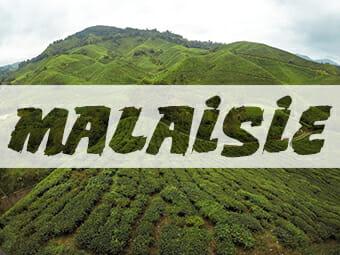 Blog Voyage Voyage Malaisie