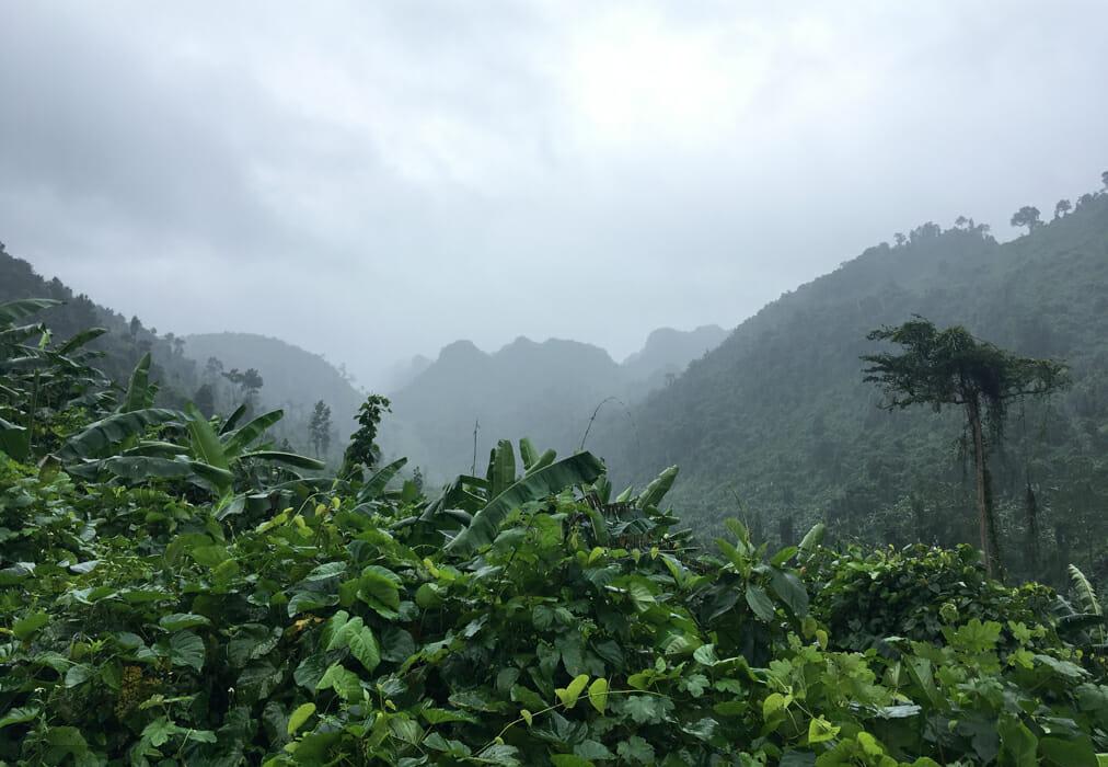 grotte phong nha montagnes
