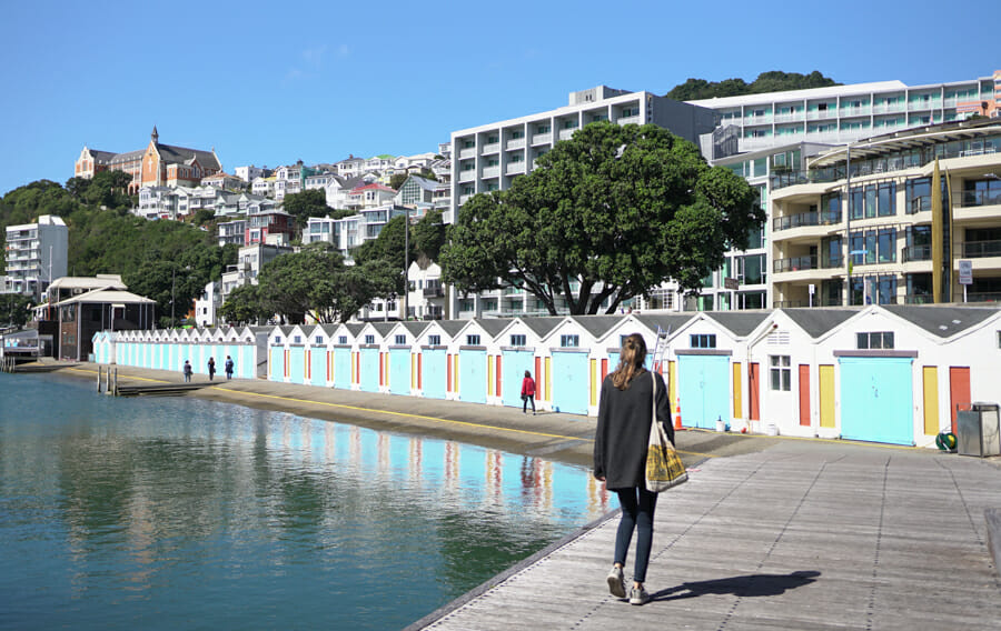 roadtrip nouvelle zelande wellington