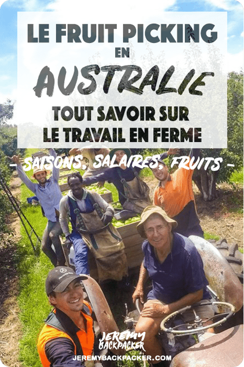 fruit-picking-australie-ferme-job