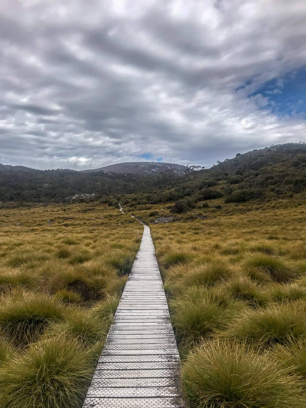 parc national cradle mountain tasmanie